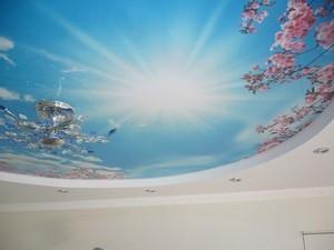 Натяжные потолки с рисунком - Фото 1