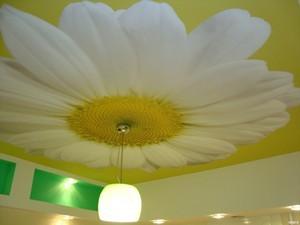 Недорогие красивые потолки - Фото 2